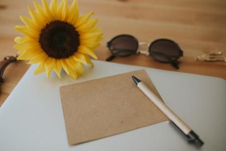 Sunny Days V4