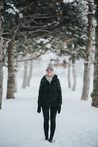 Winter Wonderland V4
