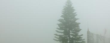 Sapa valley in the mist  Vietnam