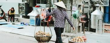 Namdinh  Vietnam