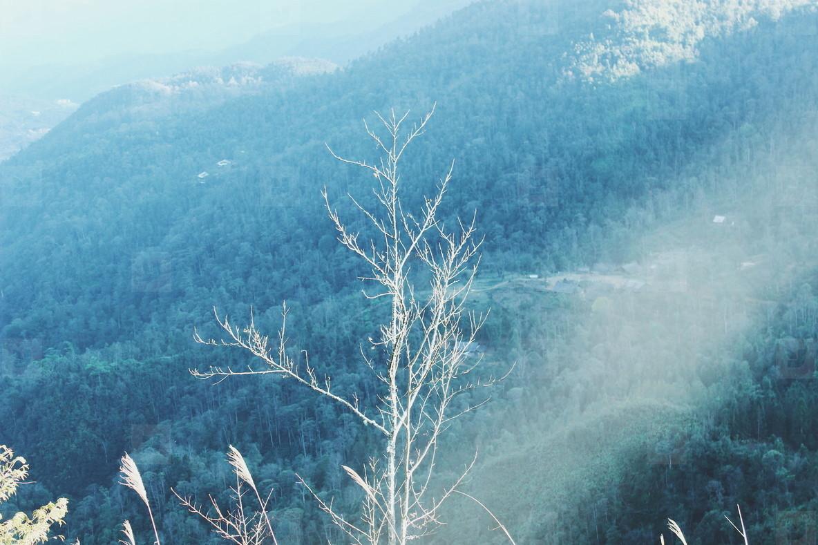 Mountain view  Vietnam  05