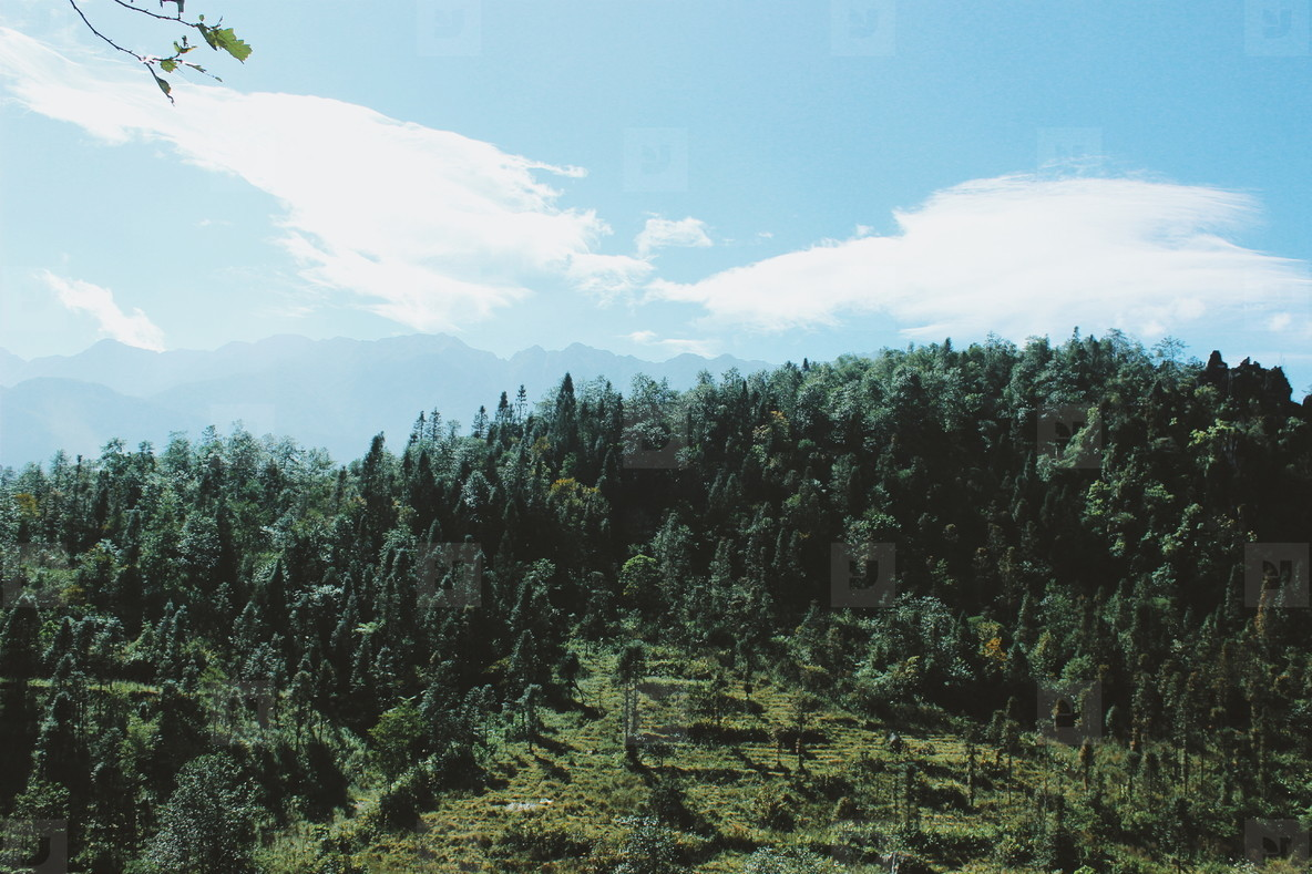 Mountain view  Vietnam  19