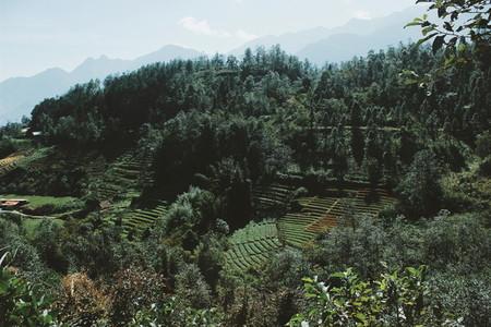 Mountain view  Vietnam 20