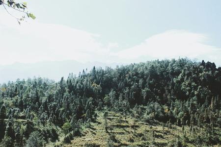 Mountain view  Vietnam 21