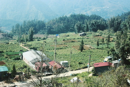 Sapa City Vietnam
