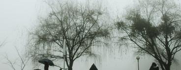 Walk in the misty
