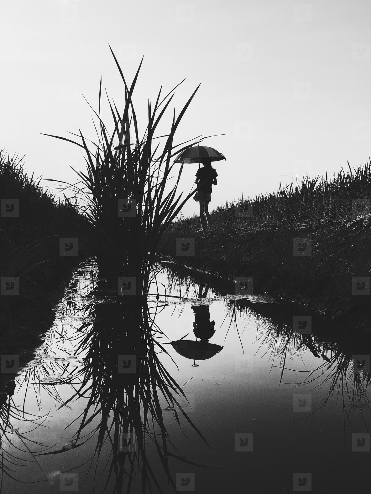 Black and White photo  03