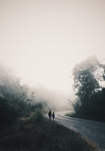Country road with mist  01