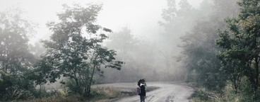 Country road with mist  04