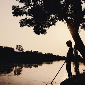 Silhouette photo  05
