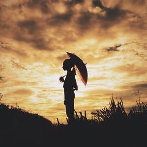Silhouette photo  10