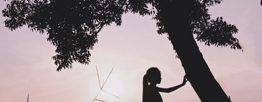 Silhouette photo  12