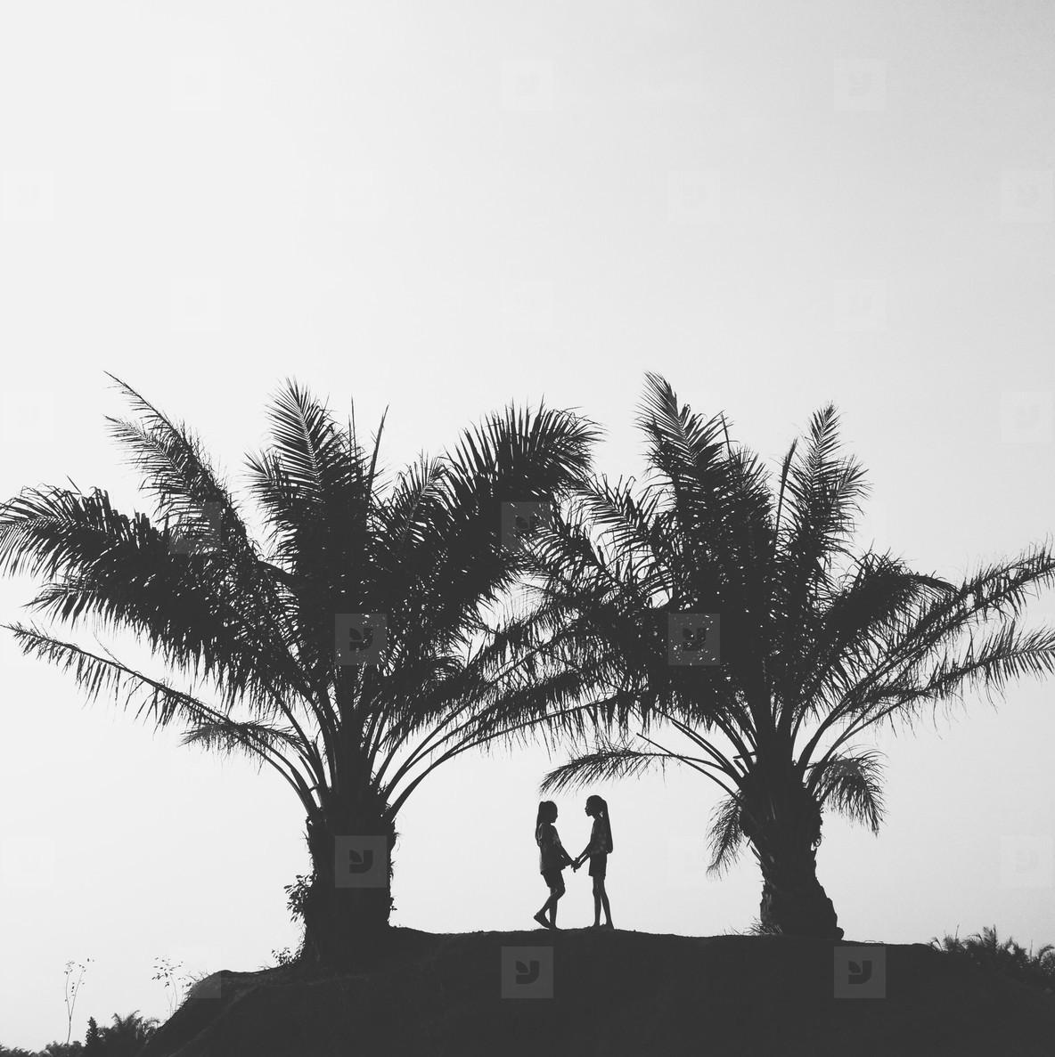 Black and White photo  36