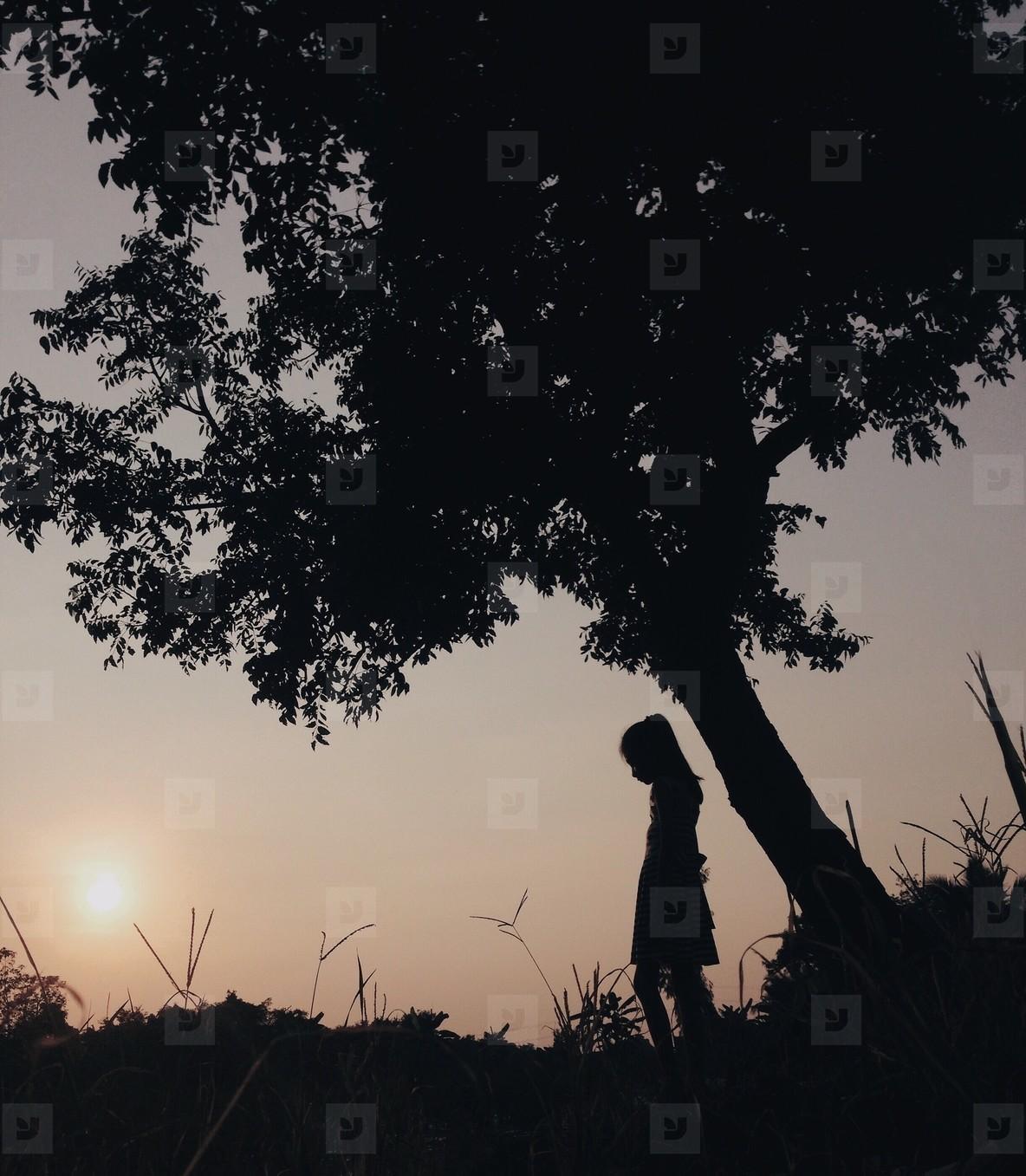 Silhouette photo  22