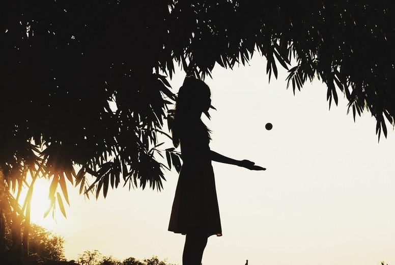 Silhouette photo  23