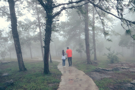 Couple in the misty forest