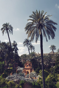 The Gardens of Alcazar