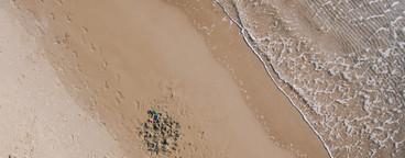 Beach Boy Aerial 08