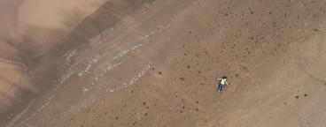Beach Boy Aerial 03