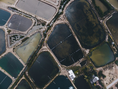 Fish Farms From Above 02