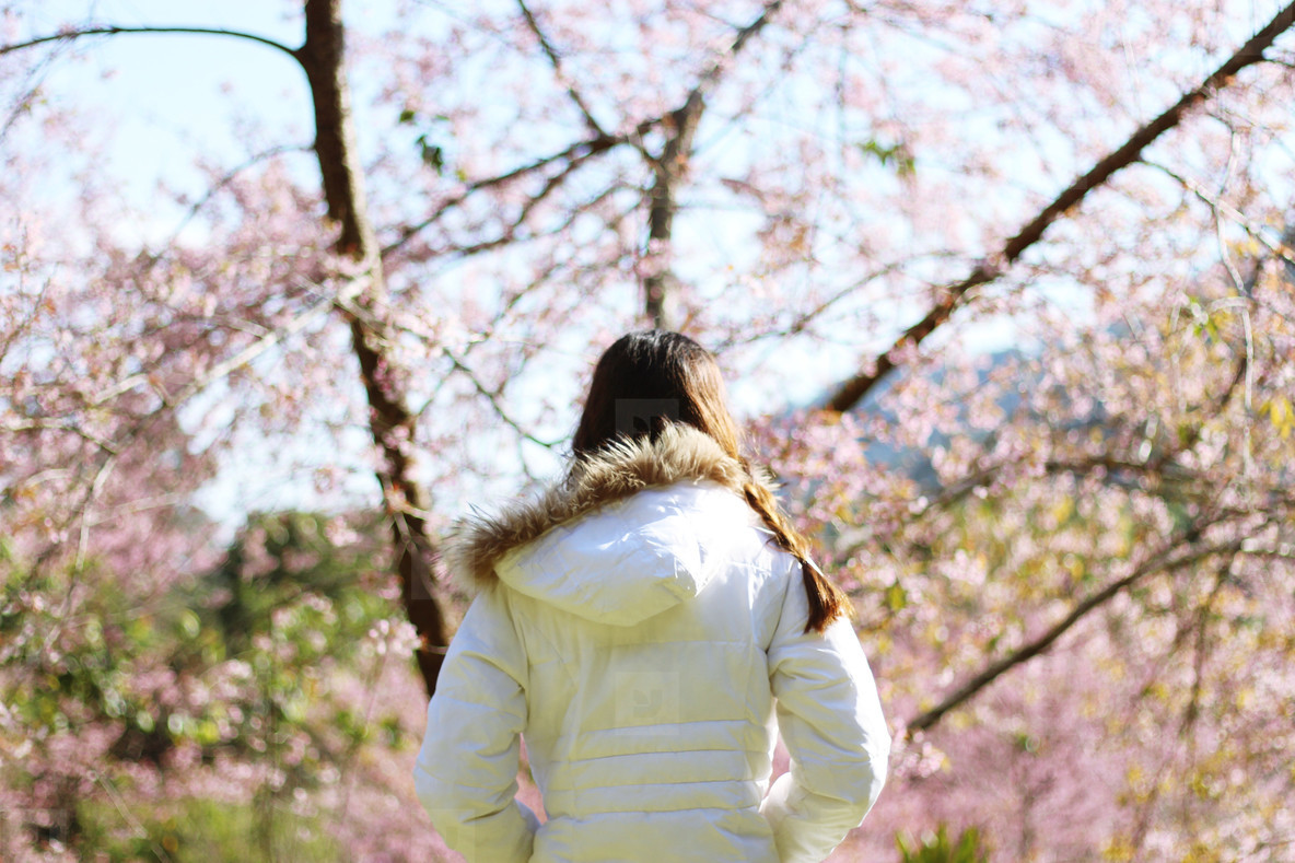 Young girl with cherry blossoms