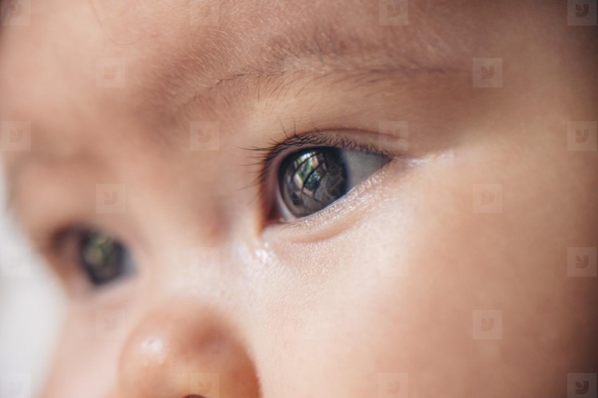Baby Eye Closeup 2