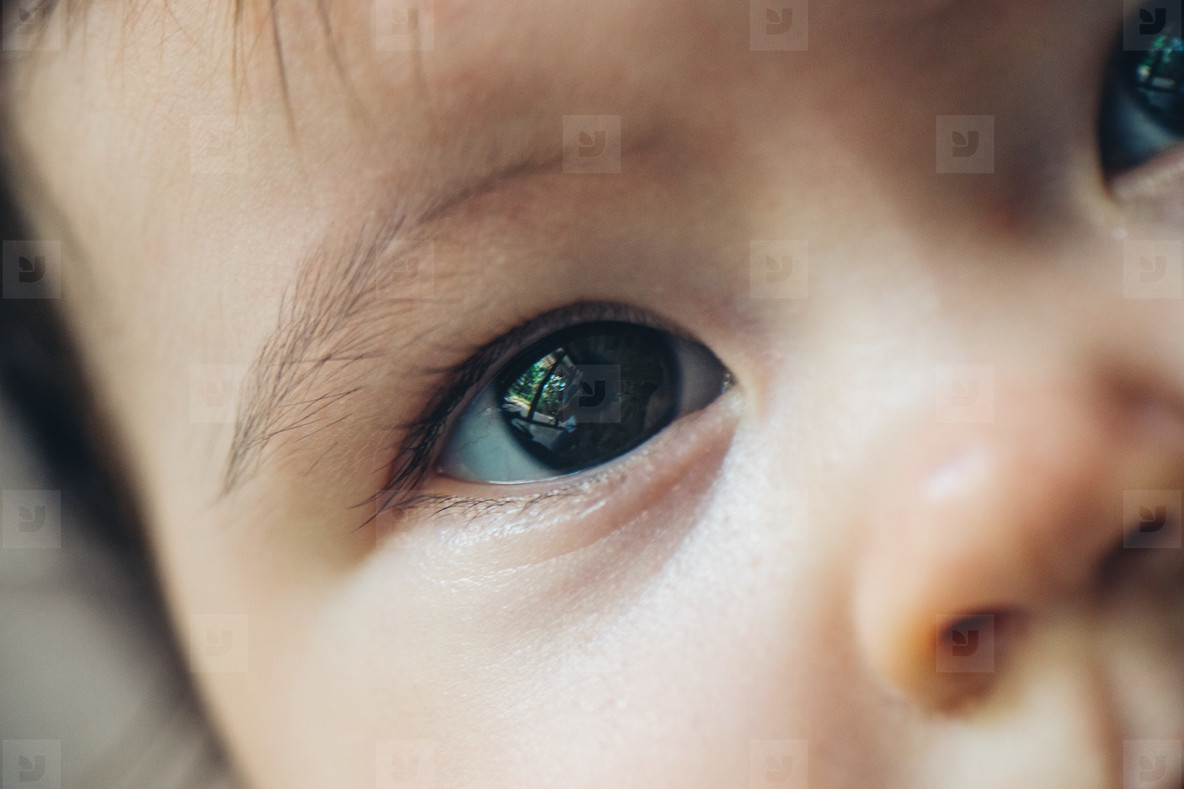 Baby Eye Closeup