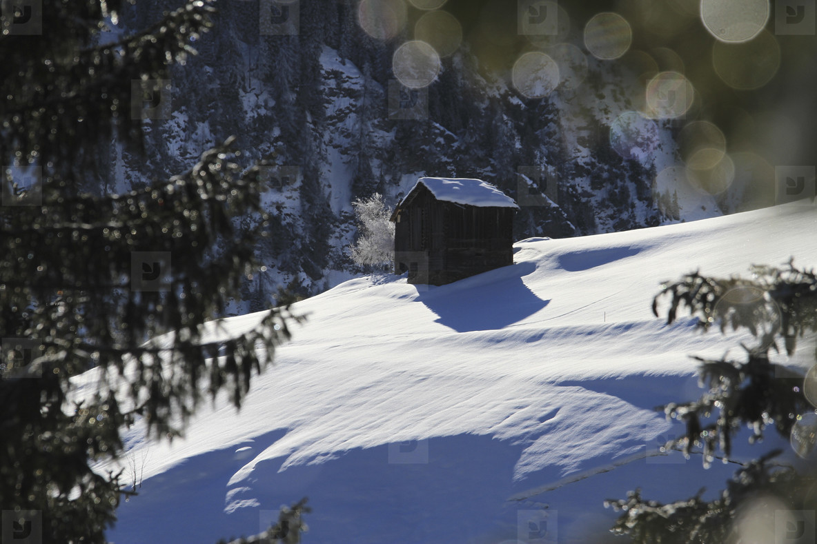 Alpine Views  02