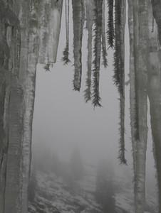 Alpine Views 07