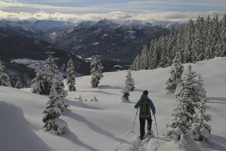 Alpine Views 20