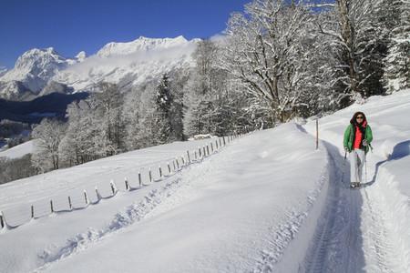Alpine Views 22