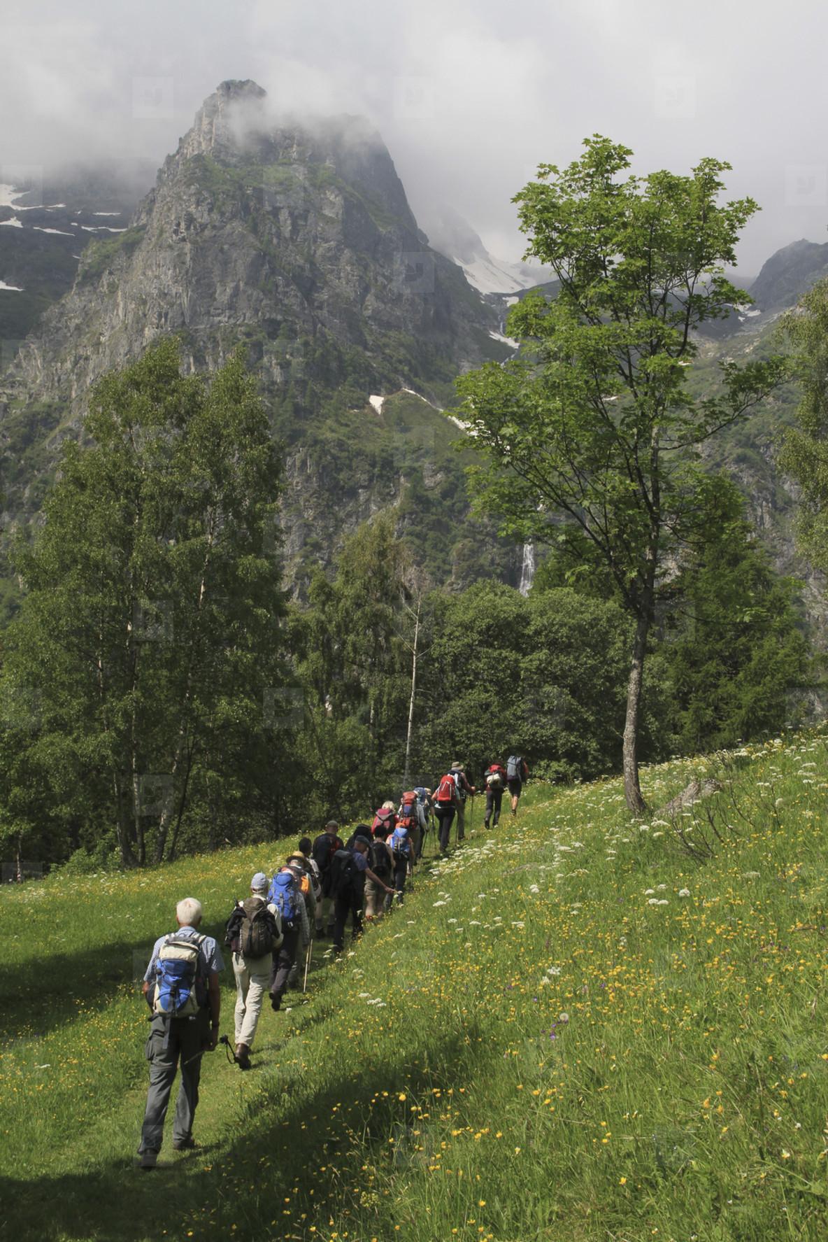 Alpine Views  39