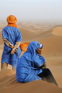 Desert Dreams  01