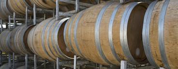 Vintage Wine  06