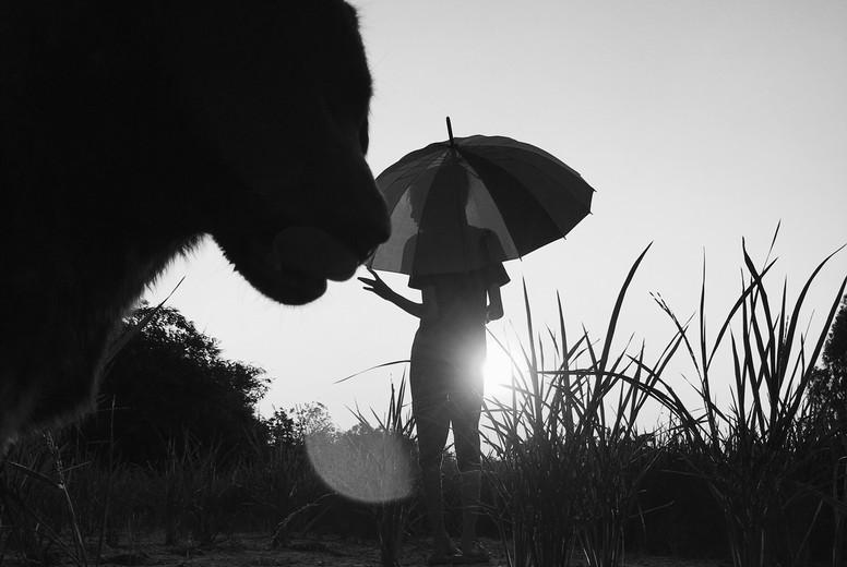 Black and White photo  47