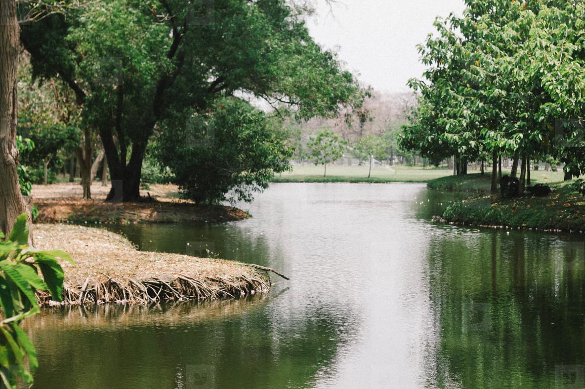 Lake view at public park  01
