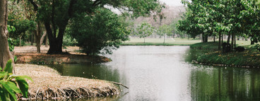 Lake view at public park  01