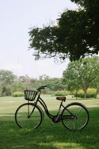 Retro bicycle in public park