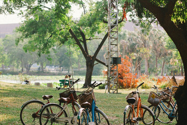Bicycle in public park