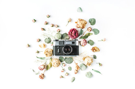 Retro camera  roses and leaves