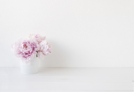 Peonies in white pot styled shot