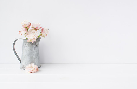 Styled stock photo   Blush roses