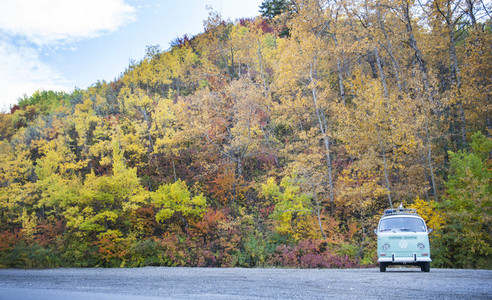 VW Bus in Fall Trees