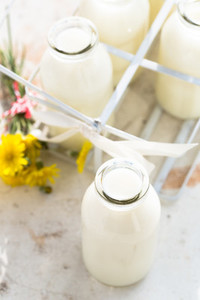 Bottles of fresh milk