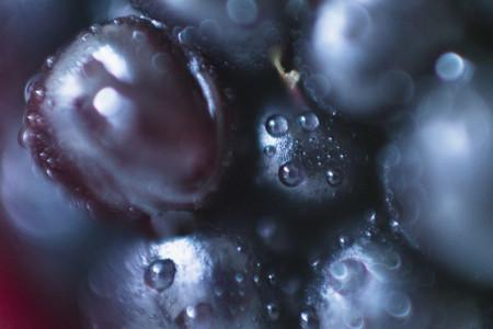 Macro Fruit  07