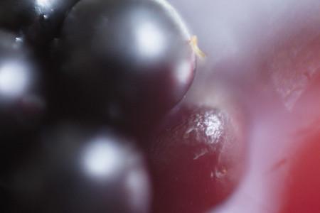 Macro Fruit 17