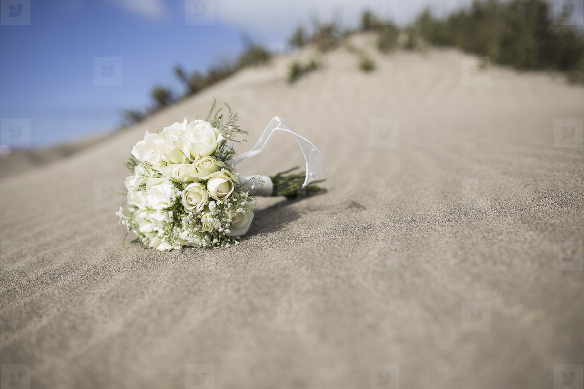 Wedding by the Sea  13