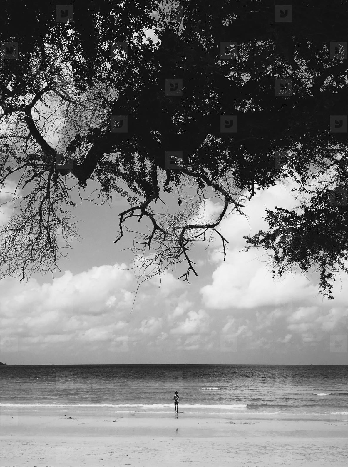 Black and White photo  51