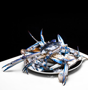 Fresh Blue swimmer crab