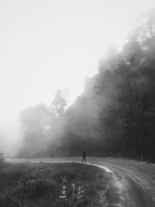 Silhouette single women walking